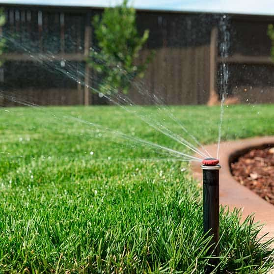 Investing in Professional Irrigation Installation Services